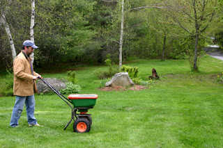 How to Reseed Your Lawn