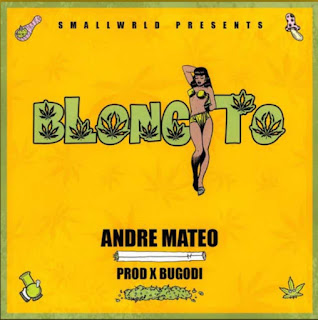 152331569 451707005879557 1633505306107339029 n - Andre Mateo Music - BLUNCITO