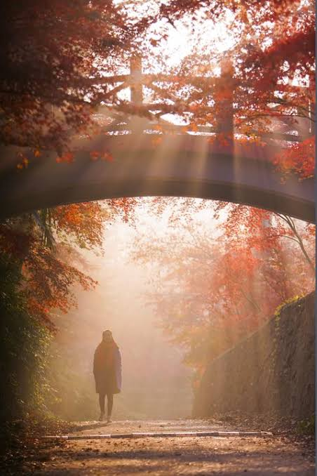 BABALAWO OBANIFA: IFA MORNING PRAYERS BY BABALAWO OBANIFA