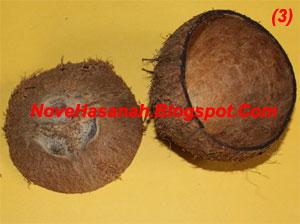 langkah-langkah dan cara membuat kerajinan tangan wadah multigunan dari batok (tempurung) kelapa yang sangat mudah untuk anak-anak 3