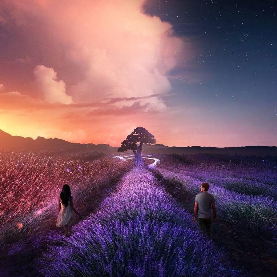 05-A-lavender-field-at-night-Illustrations-Martina-Stipan-www-designstack-co