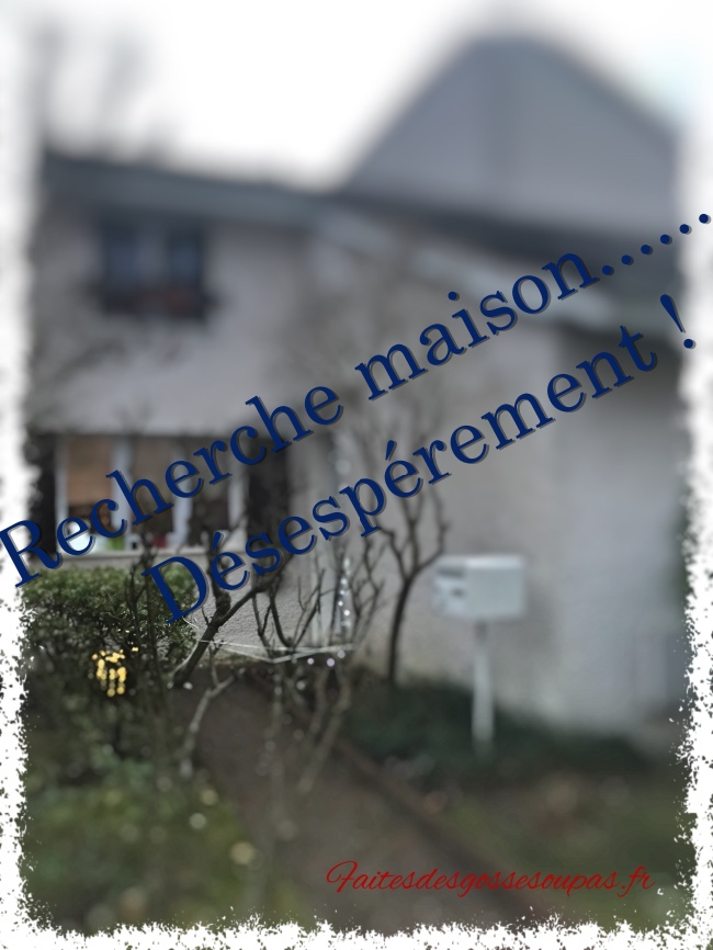 http://faitesdesgossesoupas.fr