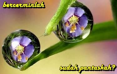 www.kiatjitu.com Keutamaan Hafal 40 Hadits Nabawiyyah