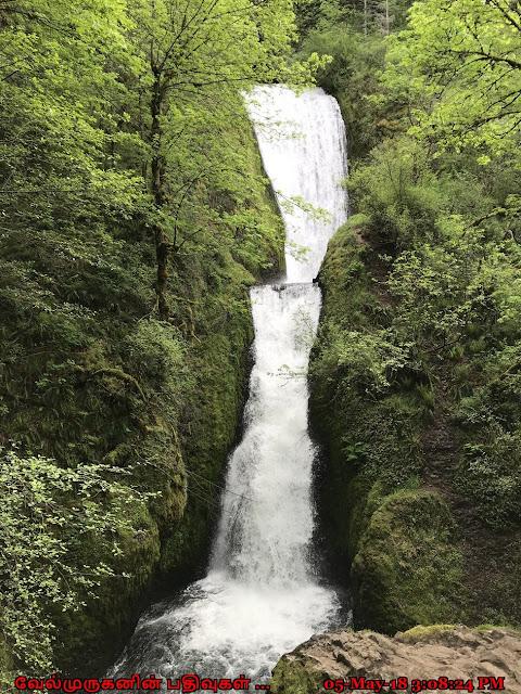Oregon Bridal Veil Falls