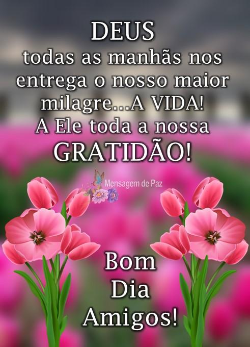 DEUS  todas as manhãs nos entrega   o nosso maior milagre...  A VIDA!  A Ele toda a nossa  GRATIDÃO!