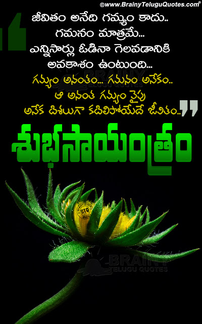 teugu quotes about success, good evening thoughts in telugu, telugu motivational quotes hd wallpapers