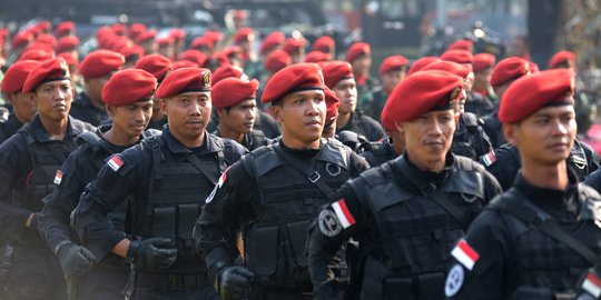 Ketua DPR Minta Koopssus TNI Diterjunkan Ke Papua
