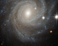 Spiral Galaxy NGC 3344