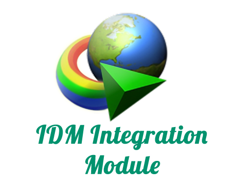 Internet Download Manager Extension