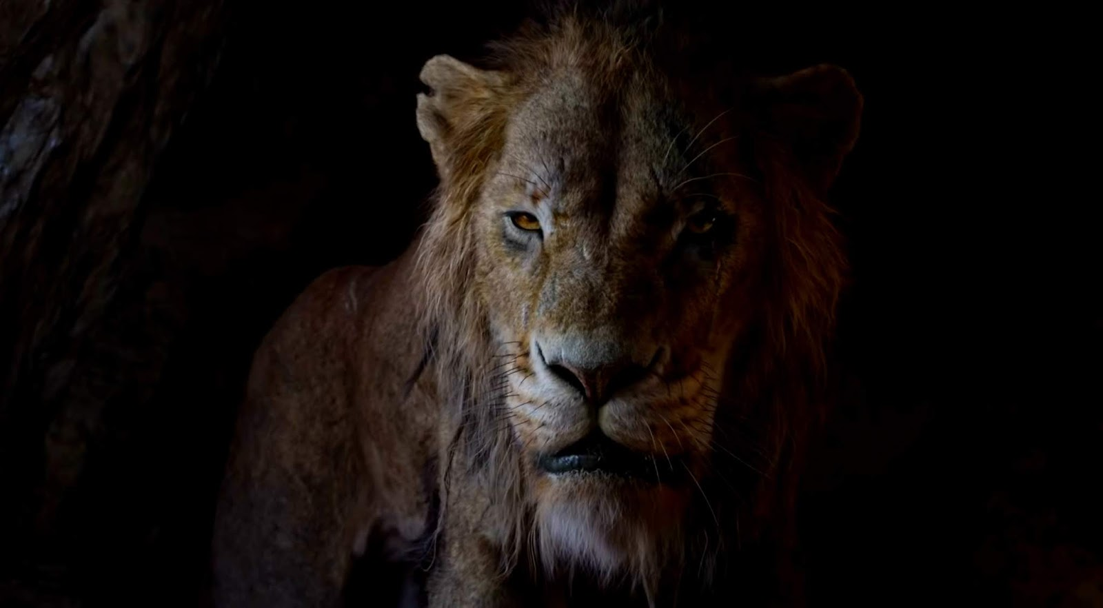 Leijonakuningas Arvostelu