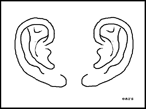Line Drawing Ear : Art now and then drawing painting the human ear