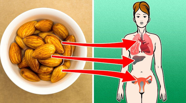 Eat Almonds Every Day