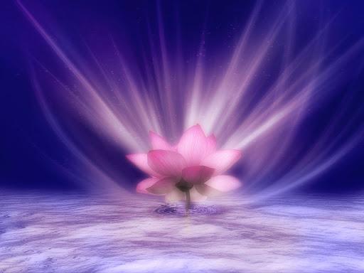 Năng lượng tâm linh là gì mà tác động lớn lao đến sự sống vậy?