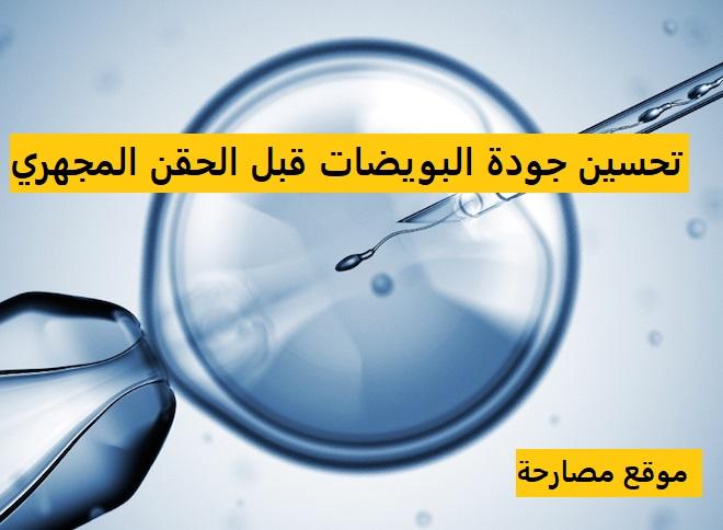 تحسين جودة البويضات قبل الحقن المجهري