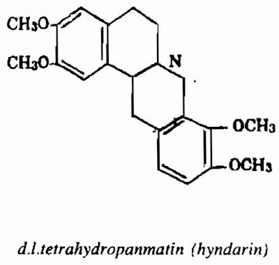 TPHH CÂY BÌNH VÔI - Stephania rotunda - Nguyên liệu làm Thuốc Ngủ, An Thần, Trấn Kinh