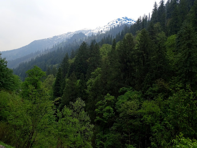 Valley View on Kheer Ganga Trek