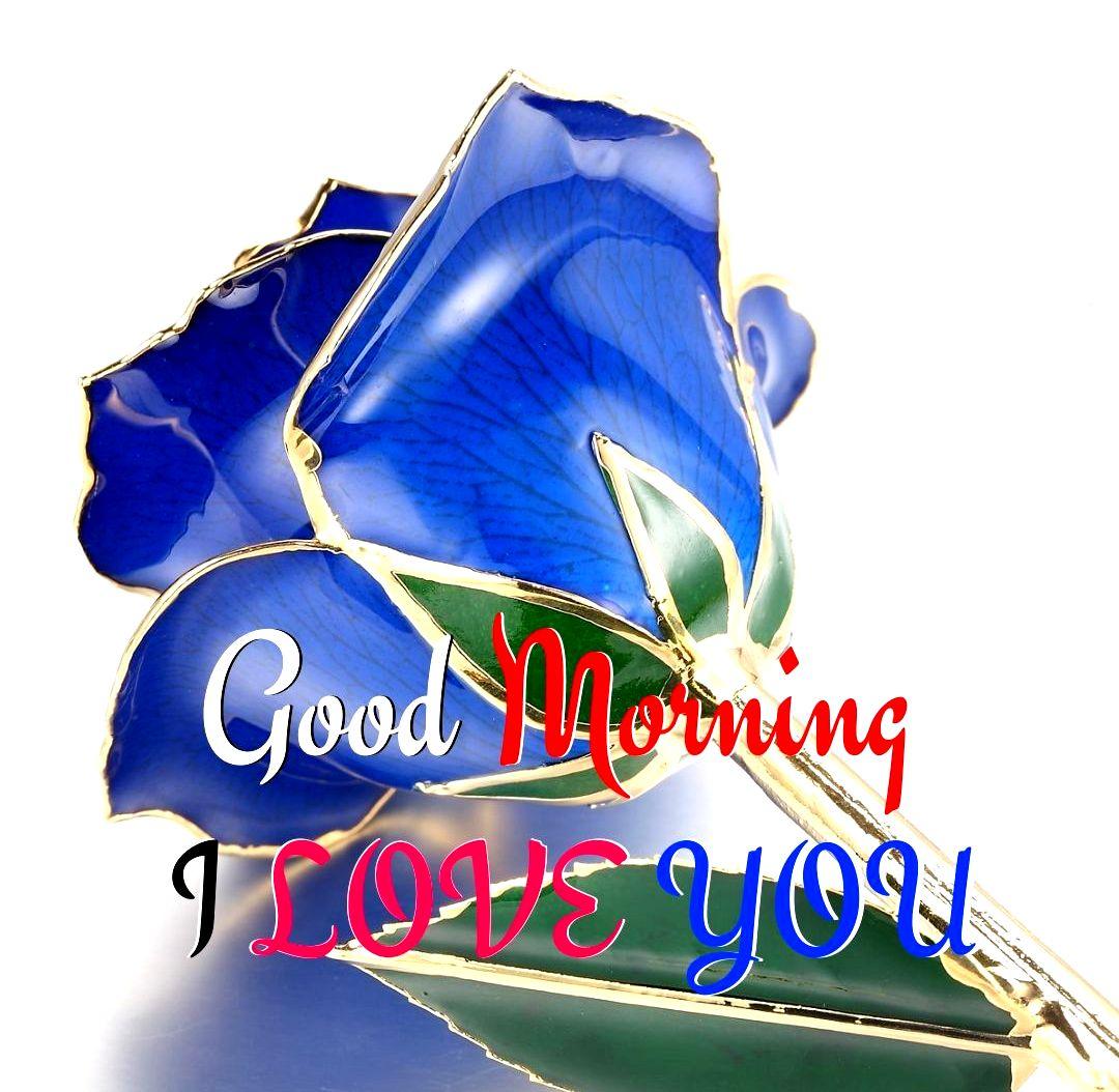 Good Morning Blue Rose Flower