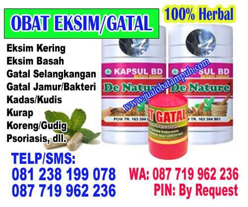 Obat Ampuh Herbal Gatal Gatal Tanpa Efek Samping