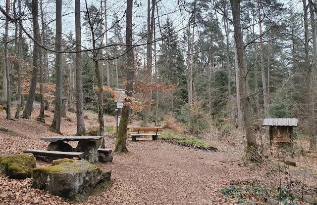 Rotmainquelle im Lindenhardter ForstRotmainquelle