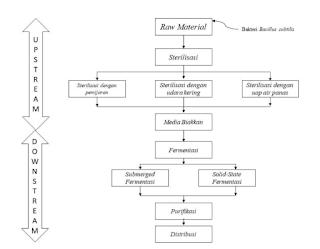 Skema Proses Produksi Enzim Protease dari Bakteri Bacillus subtilis.