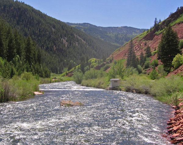 Fryingpan River,  Colorado fishing