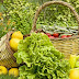 Εξοφλούνται οι δικαιούχοι της βιολογικής γεωργίας-36 εκ. ευρώ στους λογαριασμούς