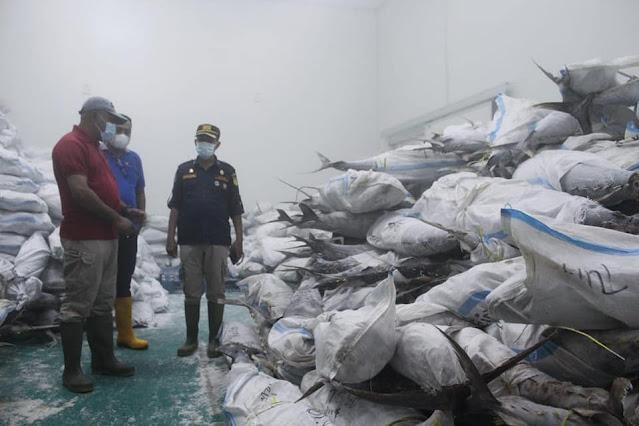 Pemkot Biak Numfor Kirim 1 Kontainer Ikan Tuna dan Black Marlin ke Surabaya .lelemuku.com.jpg