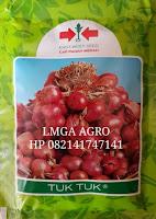 Budidaya tuk tuk, bawang merah, cap panah merah, jual benih panah merah, toko pertanian, toko online, lmga agro