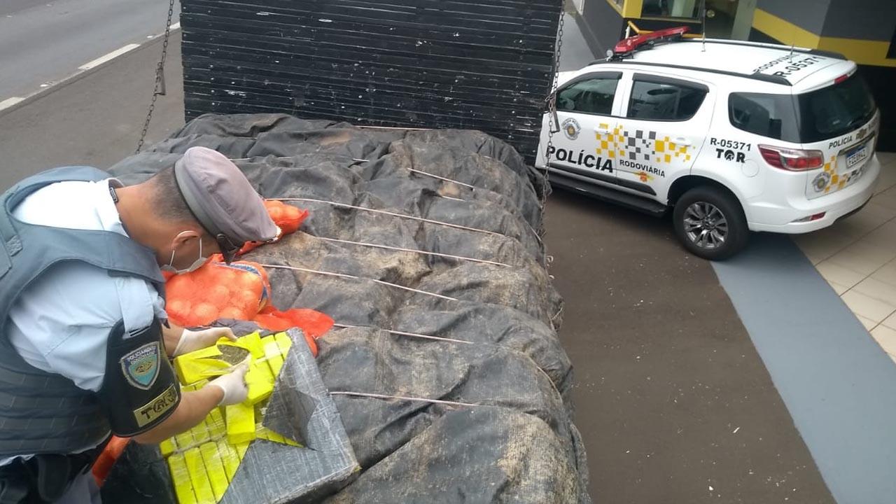 Polícia apreende mais de 700 quilos de drogas em carga de cebola