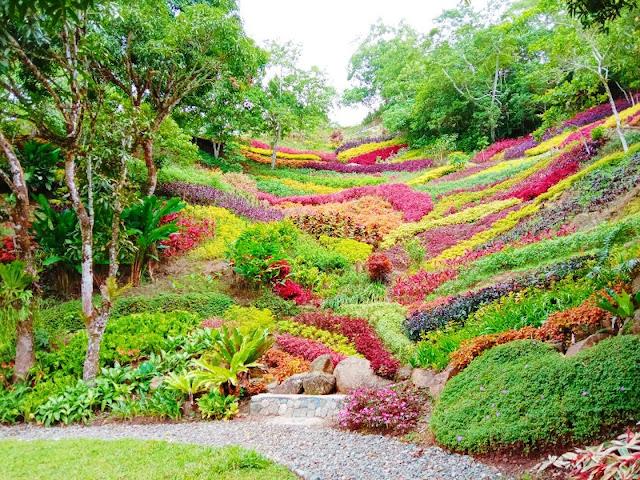Lakeview Le Jardin Botanical Garden Cebu City