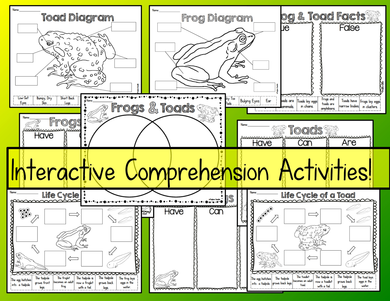 Frog And Toad Venn Diagram Programmable Room Stat Wiring The Creative Colorful Classroom Frogs Toads