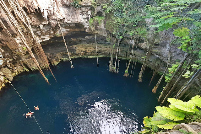A view from the top of a cenote near Cancun...