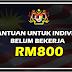 Bantuan Untuk Individu Belum Bekerja RM800 - PERANTISAN