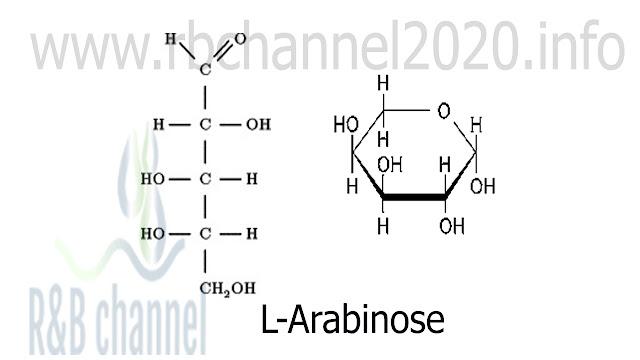أرابينوز L - Arabinose :