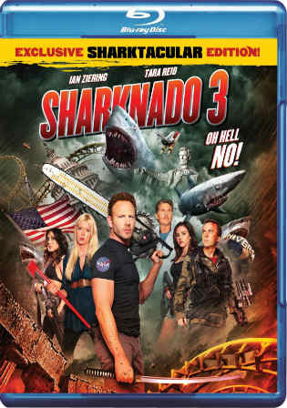 Sharknado 3 Oh Hell No 2015 BRRip 300MB UNCUT Hindi Dual Audio 480p Watch Online Full Movie Download bolly4u