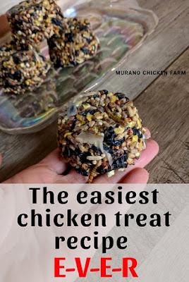 Chicken treats from easy to follow recipe