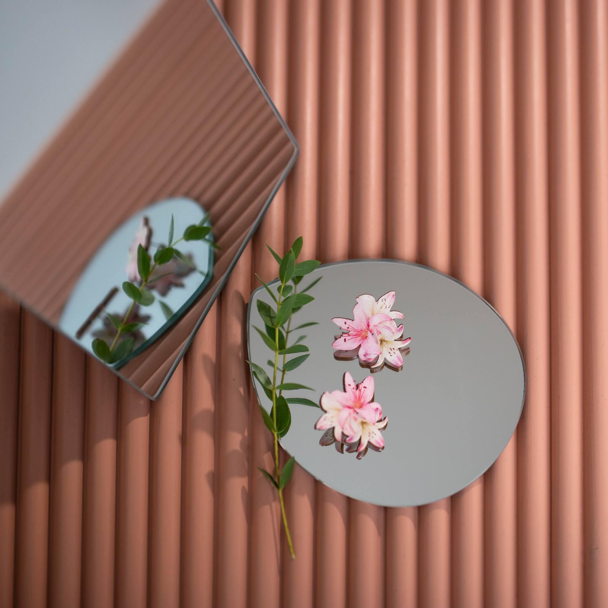 Vaaleanpunaiseksi maalatun sormipaneelin päällä kaksi peiliä, korvakorut ja pieni lehtinen eucalyptuksen oksa. Korvakorut heijastuvat peileistä.