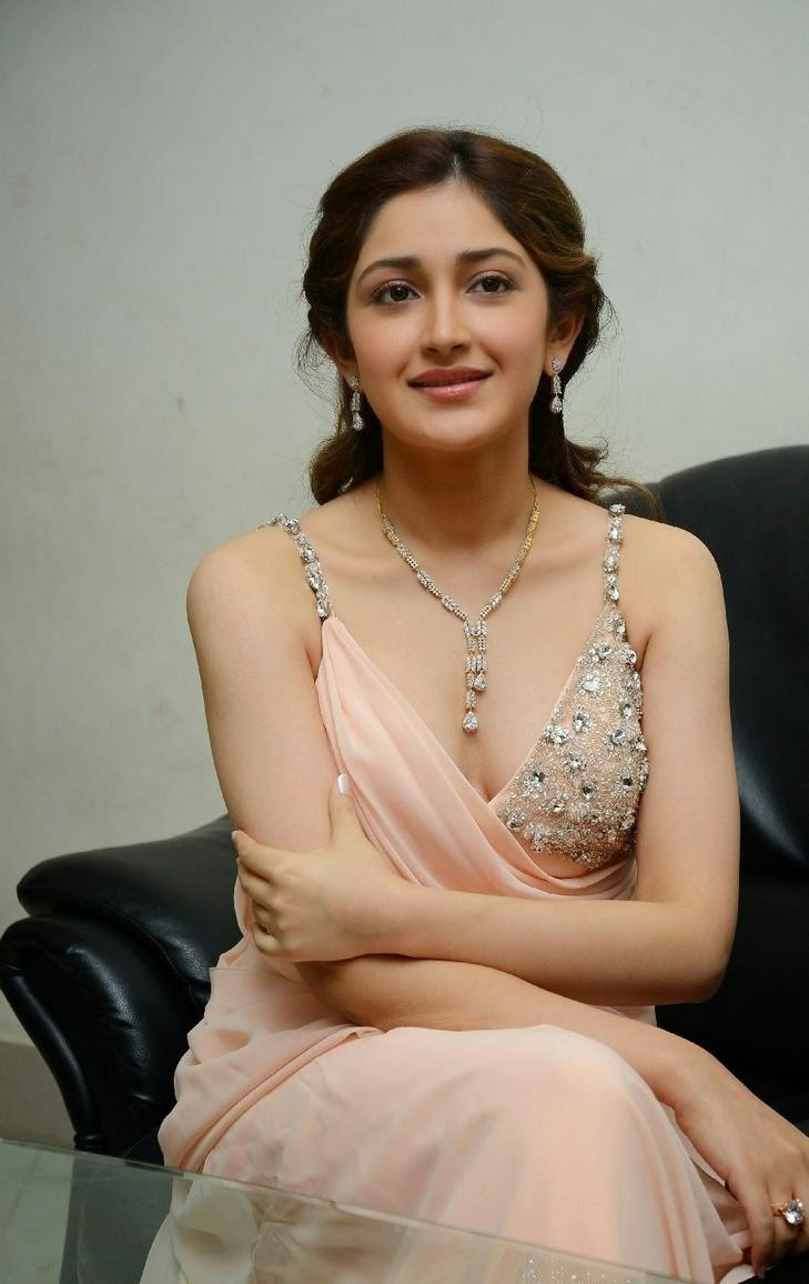 First Look of Sayyeshaa Saigal - Sexy Poses New Actress in 2016