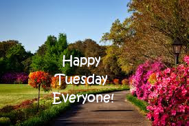 Good Morning Happy Tuesday.
