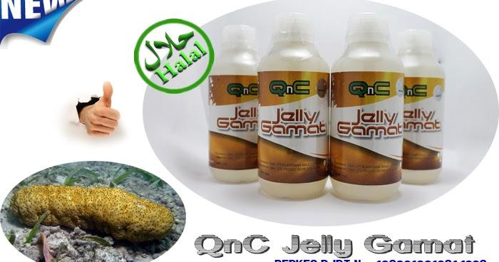 Jelly Gamat QNC - Sakacamprung