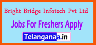 Bright Bridge Infotech Pvt Ltd Recruitment 2017 Jobs For Freshers Apply