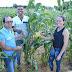 Festas juninas têm sabor da agricultura familiar