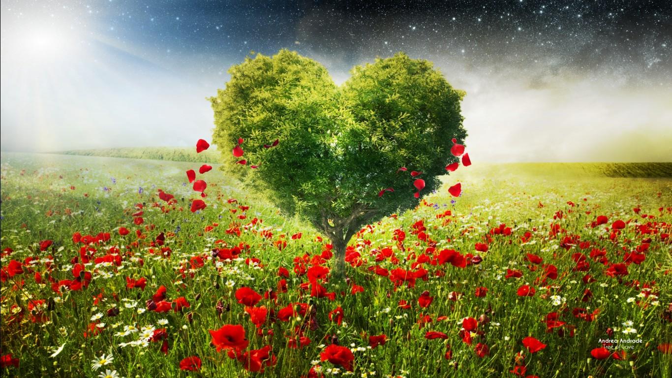 Beautiful HD Love Wallpapers