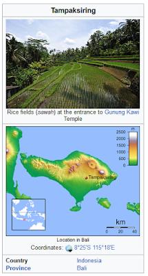 sawah terasiring pura tirta empul tampak siring bali indonesia wisataarea.com