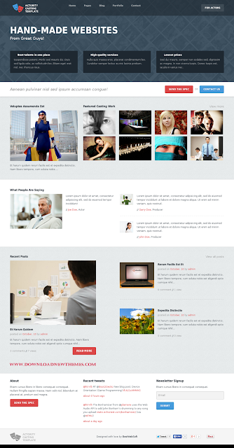 Premium WordPress Template