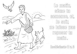 http://www.biblenfant.org/Coloriages/coloriage_semeur.jpg