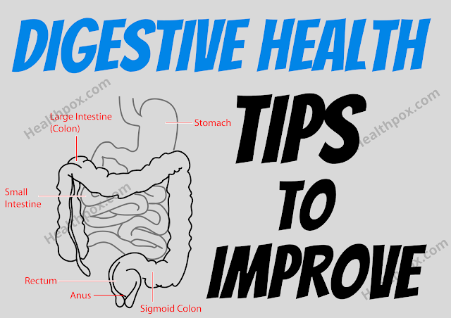 How To Improve Digestive Health: Simple Tips To Keep Your Digestive System Healthy