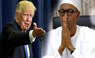 Trump Buhari