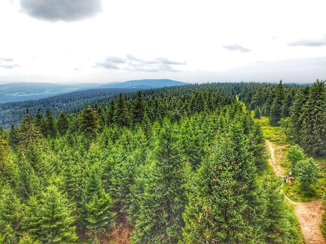 widok z wieży widokowej na Orlicy, na góry, lasy