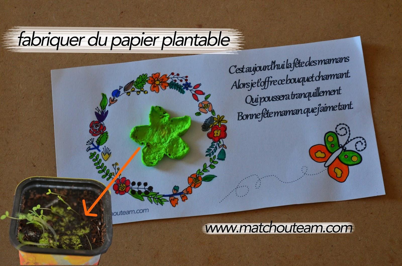 cadeau fête des mères papier plantable